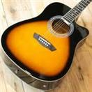 WASHBURN GUITARS Electric-Acoustic Guitar WA90CE VSB